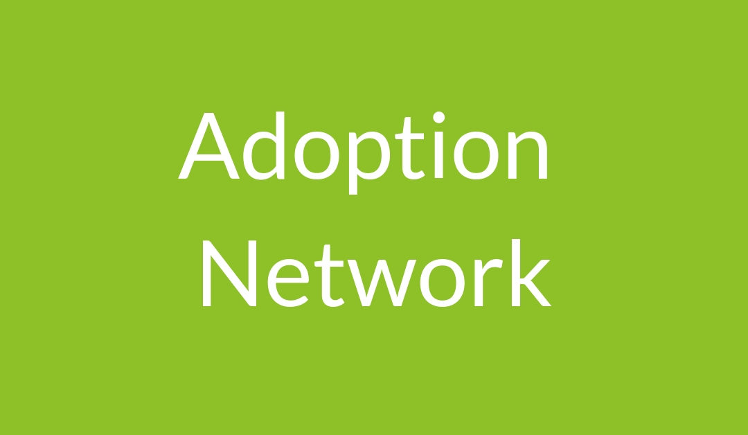 Adoption Network: Our Unexpected Family