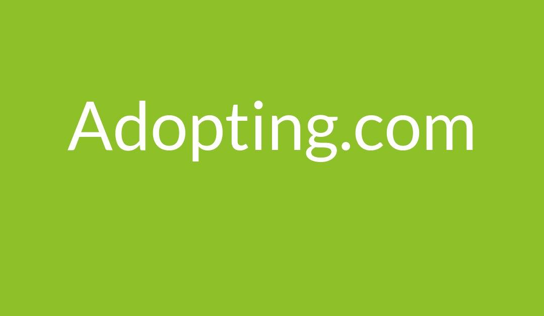 carrie-goldman-Adopting-com